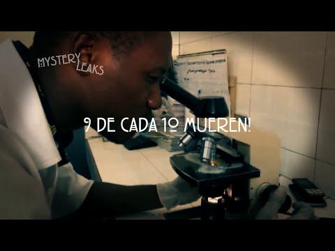 Los virus + letales del mundo: Ébola