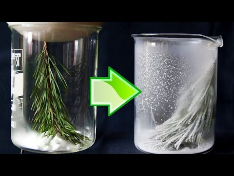 Video How to grow transparent beautiful crystals of alum salt - Do It Yourself! (7M 33S)