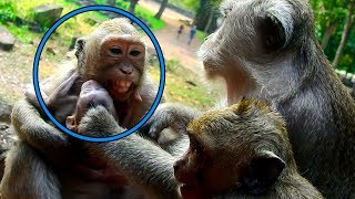 Why Dolly Do Very Badly On Pity Baby Prutus JR  Baby?| Prutus JR Cry Loudly| So So Pity To Baby