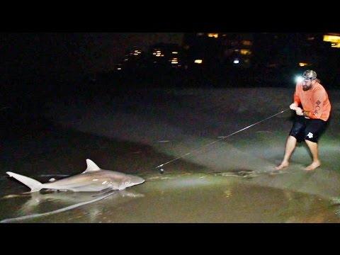 Shark Fishing Battle | Dude Perfect