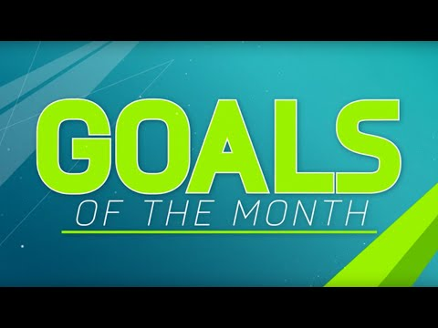 Round 5: FIFA 16 fan Goal of the Month contenders