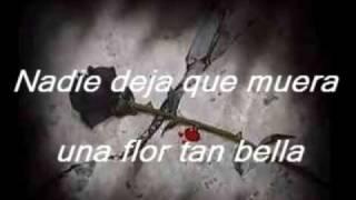 Download lagu Don Omar - Ayer la Vi