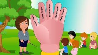 Latest Finger Family Song For Kids | Learn Finger Names (Finger Family) |Finger Family By Super Kids