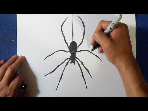 Видео как нарисовать паука на лице