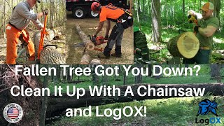 Best Way To Remove a Fallen Tree, With Your Chainsaw and a LogOX