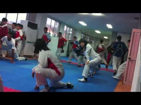 Taekwondo Training Camp in Korea 2011 [No Music] Image 1