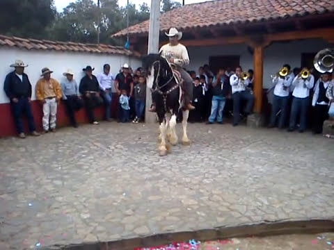 Tupátaro Mich. Caballos Bailadores julio 2011.