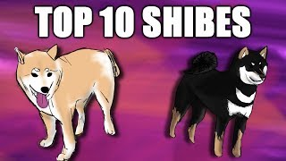 Top 10 Shibes