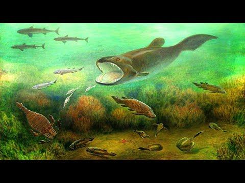 Девонский период палеозойской эры (рассказывает палеонтолог Эрвин Лукшевич)