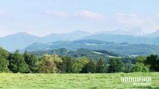 Volkstümliche Heimatmelodien - Beim Engelbräu (Friedrich Finkel Und Seine Musikanten)