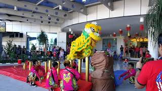 舞狮 Kids Lion Dance Labuan 16 February 2019