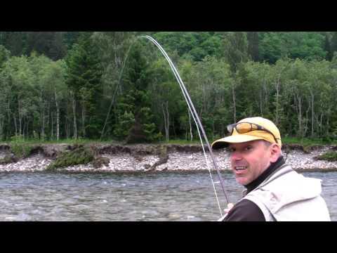 Gaula 2011 Big Salmon Norwegian Flyfishers Club