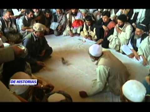 Peleas de codornices la nueva atracción en Afganistán