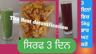 3 Days Detox Diet Plan For Weight Loss | How to Lose Weight Fast 5 Kg In 3 Days | (Punjabi)
