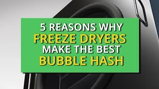 5 Reasons Why Freeze Dryers Make the Best Bubble Hash