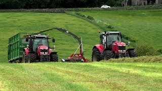Silage '18 - Trailed Silage with Massey Feast!
