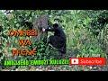 Mzee Kalali - Omubbi waffene