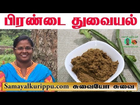 Pirandai Thuvaiyal Recipe in Tamil | பிரண்டைத் துவையல் |  Adament Creeper Chutney | Samayal in Tamil