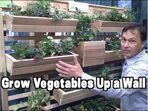 Vertical Gardening Examples at the 2014 Chicago Flower and G
