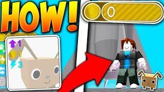 NOOB ABUSES INTO *SECRET* PRO ONLY AREA!! - Roblox Pet Simulator