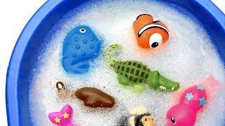Zoo Wild Animals For Children Learn Ocean Animal Names