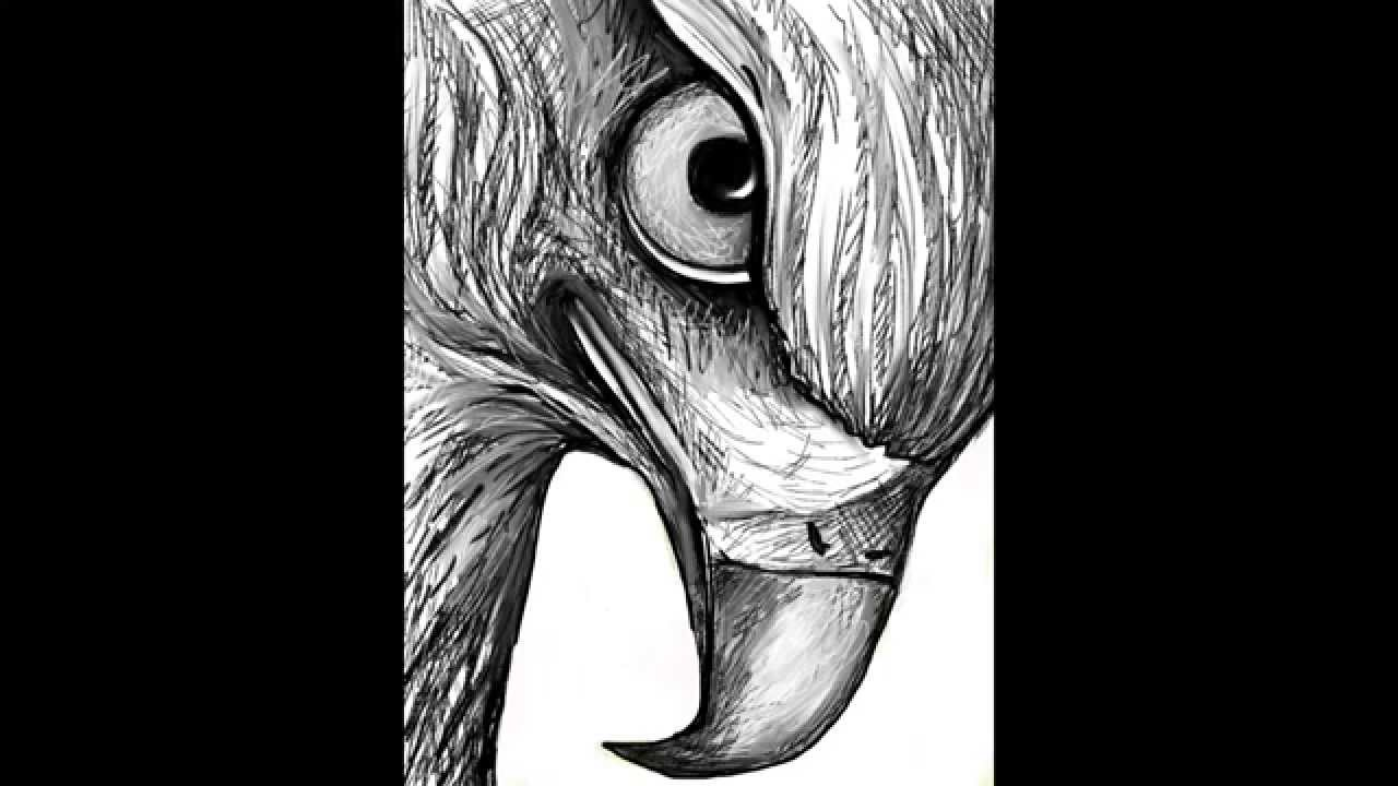 How to Draw a Hawk Head Step by Step How to Draw a Hawk in Pencil
