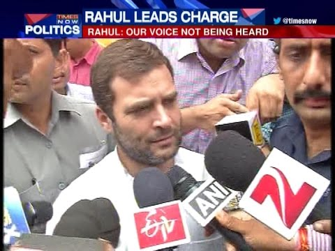 Only one voice heard in Parliament: Rahul Gandhi