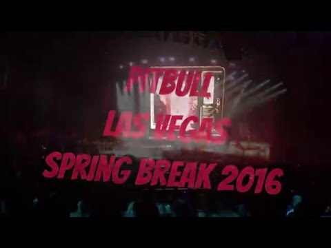 Pitbull Concert - Spring Break Las Vegas 2016
