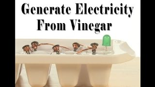 How to Generate Electricity From Vinegar At Home