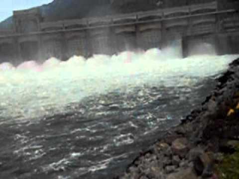 Bonneville dam for Fish count at bonneville dam