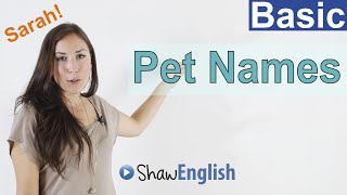 Loving Terms, Pet Names in English, Basic English Lessons 5