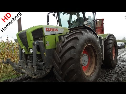 Claas Xerion Trac VC | King in the mais & mud fields in the Netherlands | HD.