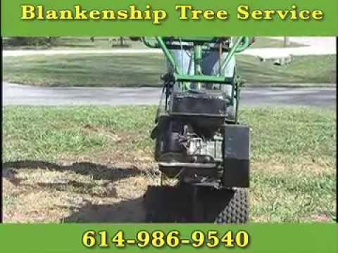 Blankenship Tree Service, Reynoldsburg, OH