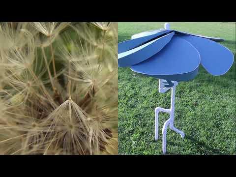Leaph - Biomimicry Video (333a)