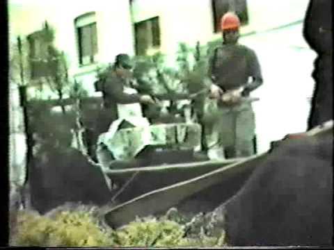 Carnaval em Figueir� dos Vinhos 1988/1989