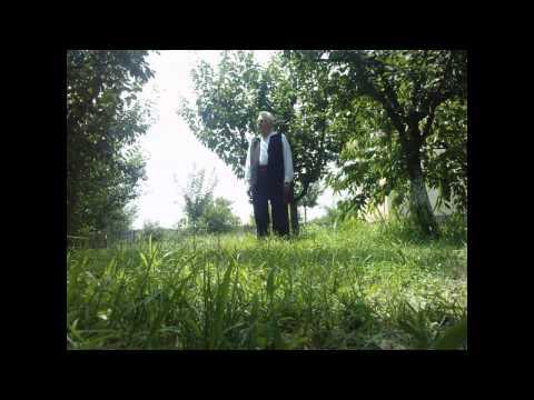 Constantin Vasile - Cantecul Gintei Latine video