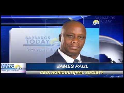 BARBADOS TODAY EVENING UPDATE - April 12, 2016