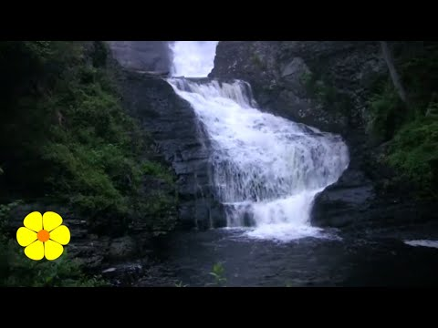 LOUD Waterfalls - White Noise to Write do Yoga or Relax - Cascada de agua para meditar o dormir