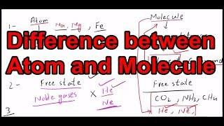 Difference between Atom and Molecule l Basic concepts of atom and molecule