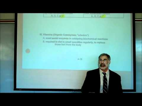 NUCLEOTIDES, NUCLEIC ACIDS, VITAMINS & MINERALS by Professor Fink