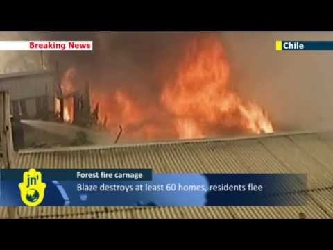 Chile Fire Storm: Massive fires sweep forests destroying homes and wreaking havoc