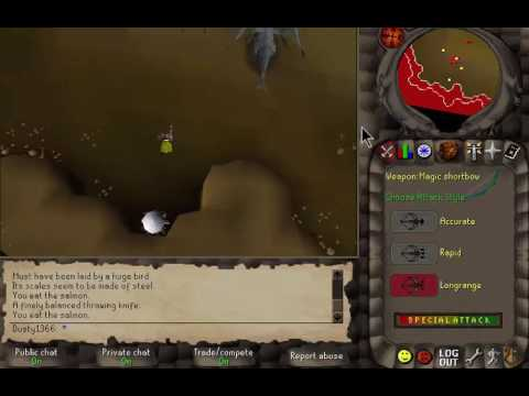Rune2006 guide How to safespot steel dragons