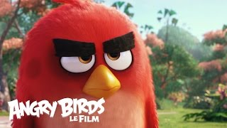 Angry Birds - Bande-annonce Teaser  officielle - VF