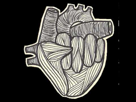 El Diluvi  - Motius - Amor tèxtil