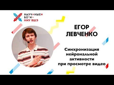 Егор Левченко о синхронизации нейрональной активности при просмотре видео / Научные бои ВШЭ