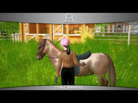 mein pferd muss abnehmen