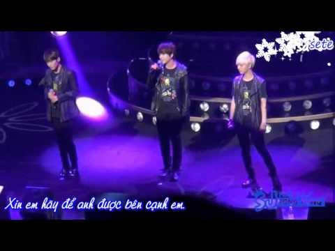 [Vietsub+Kara] Promise you - Super Junior KRY (KRY concert in Japan)