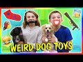 Download TESTING WEIRD DOG TOYS | We Are The Davises in Mp3, Mp4 and 3GP