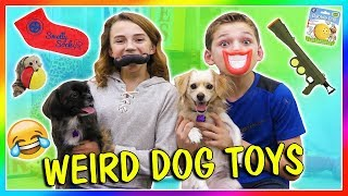 TESTING WEIRD DOG TOYS | We Are The Davises