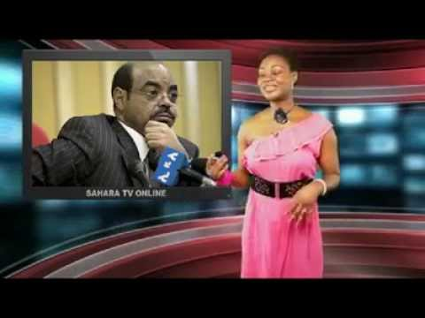 Must watch Nigerian media about  poletical repression in  Ethiopia .What is going on in ethiopia ?